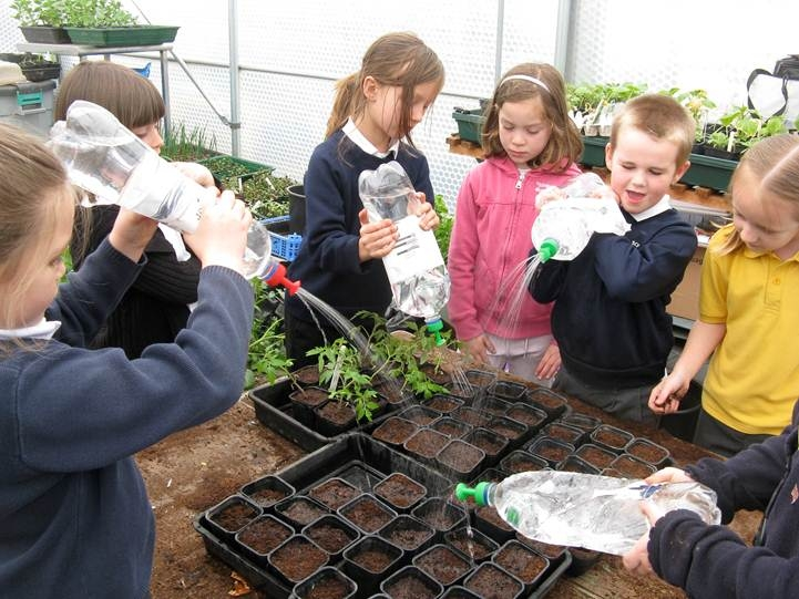 A school greenhouse for hands on learning