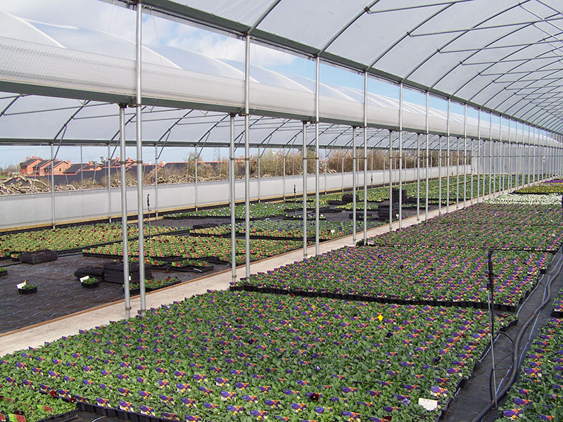 Keder Greenhouse Roof Vent System