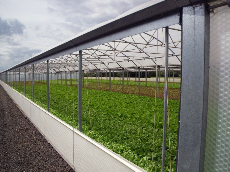 Keder Greenhouse Vent System Fully Opened